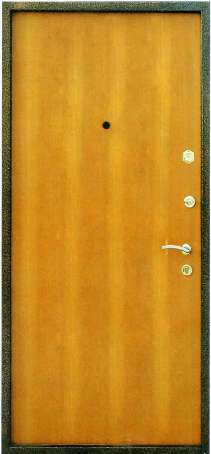 входная дверь черный ламинат